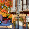 Nevada City Assay Office