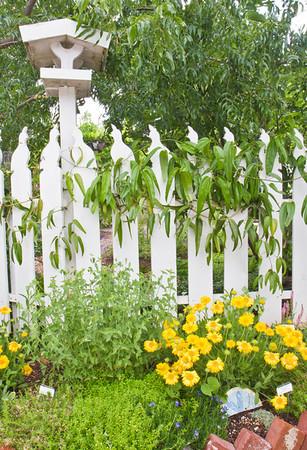 Master Gardener's Demonstration Garden