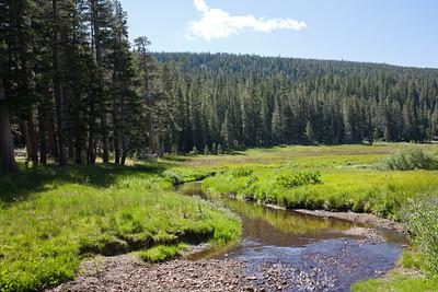 Mt. Lola Trail, Nevada County
