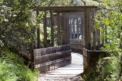 Independence Trail, South Yuba State Park