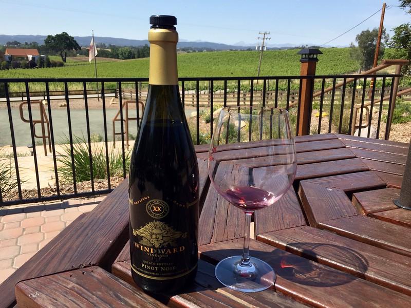 Wineward Vineyards