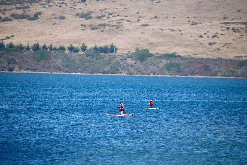 Stand-up Paddleboarding - Point Reyes National Seashore