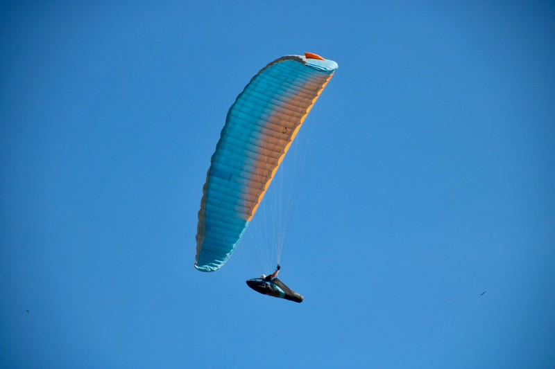 Paragliders at Ed R. Levin County Park