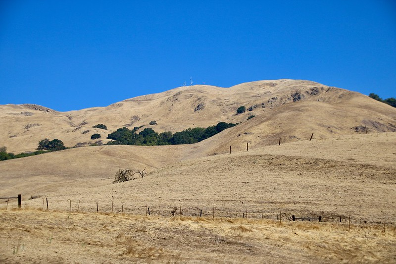 Things to do in Milpitas and North San Jose - California Travel