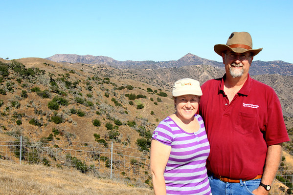 On the Catalina Conservancy Jeep Eco Tour