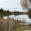 Spring Lake  park