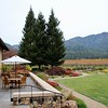 St Francis Winery