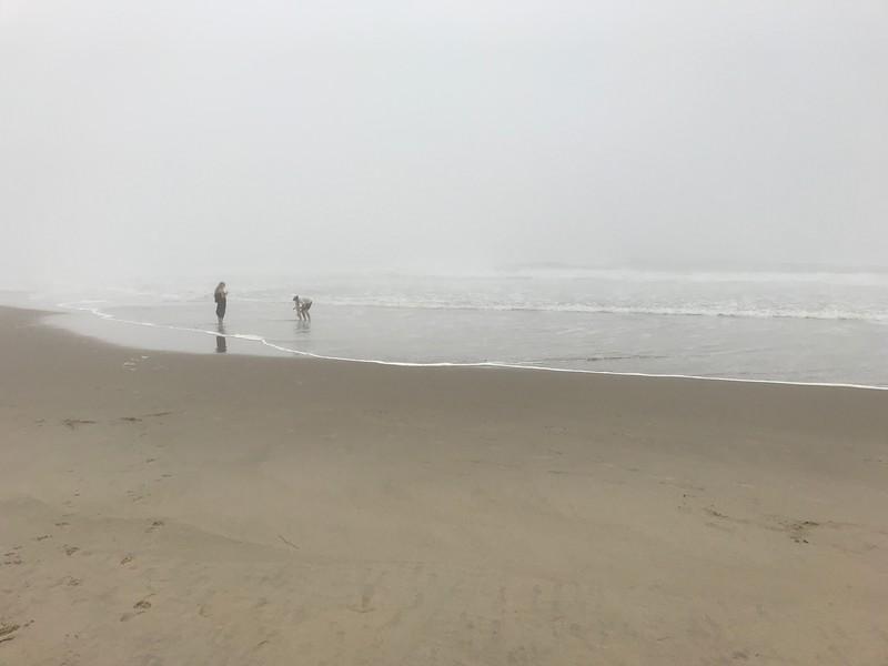 Surf Beach, Lompoc