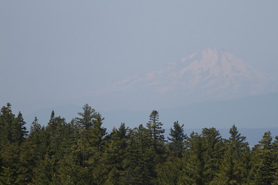 Shasta to the west