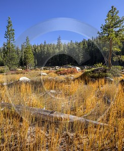 Snow Creek Lake Tioga Pass Yosemite National Park Panoramic Ice Rain Fine Art Photography Color - 014275 - 20-10-2014 - 7204x8795 Pixel