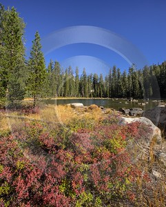 Snow Creek Lake Tioga Pass Yosemite National Park Mountain Leave Fine Art Photography Spring Grass - 014276 - 20-10-2014 - 7232x8999 Pixel