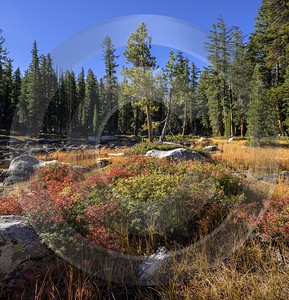 Snow Creek Lake Tioga Pass Yosemite National Park Island Landscape Photography Fine Art Posters - 014277 - 20-10-2014 - 7253x7523 Pixel