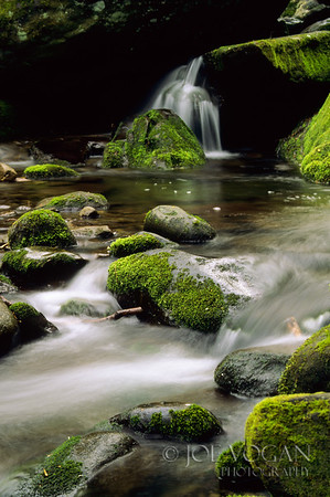Stream and Falls, Roaring Fork Motor Trail, Great Smoky Mountains National Park, Tennessee