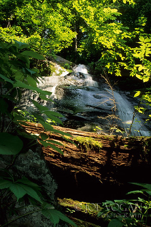 Fern Falls, Great Smoky Mountains National Park, Tennessee