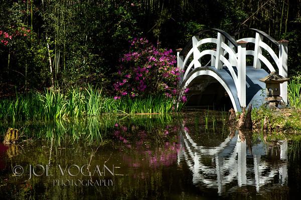 Bridge, Japanese Garden, Magnolia Plantation and Gardens, Charleston, South Carolina