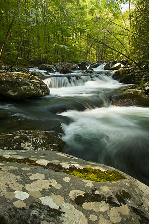 Middle Prong Little River, Great Smoky Mountains National Park