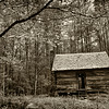 Log Cabin, Roaring Fork Motor Trail, Great Smoky Mountains National Park, Tennessee