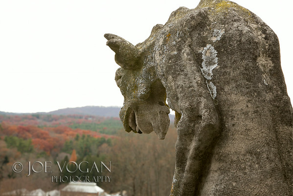 Gargoyle on the roof of Biltmore House Estate, Asheville, North Carolina