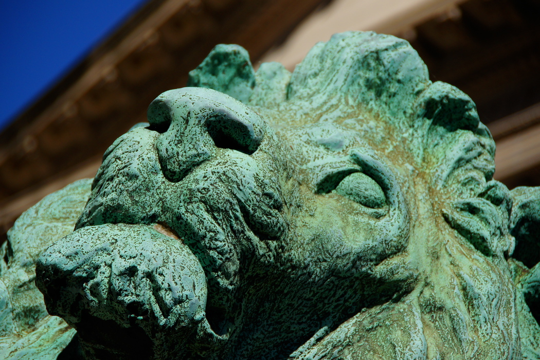Lion Statue at the Chicago Art Institution