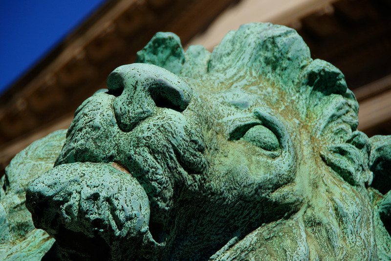 "A photo of a lion statue in down-town Chicago, Illinois.  To view the rest of my travel gallery from Chicago, Illinois click on the photo. <a href=""http://nomadicsamuel.com"">http://nomadicsamuel.com</a>"