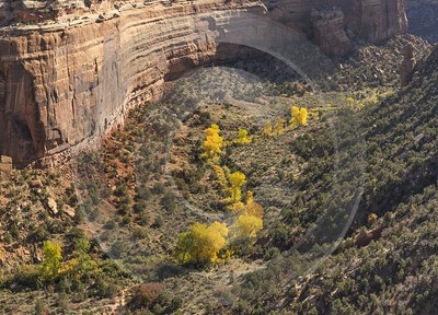Grand Junction Colorado Rimrock Drive Upper Ute Canyon Order Royalty Free Stock Photos - 021910 - 18-10-2017 - 12266x8826 Pixel
