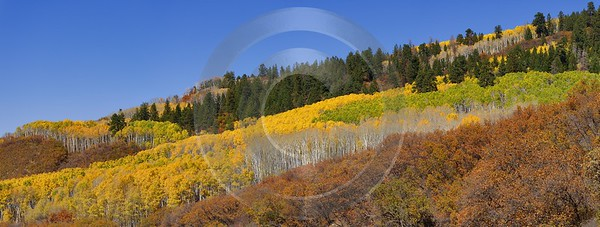 Crested Butte Kebler Pass Colorado Landscape Autumn Color Stock Photos Fine Art Print - 012231 - 07-10-2012 - 21039x7981 Pixel
