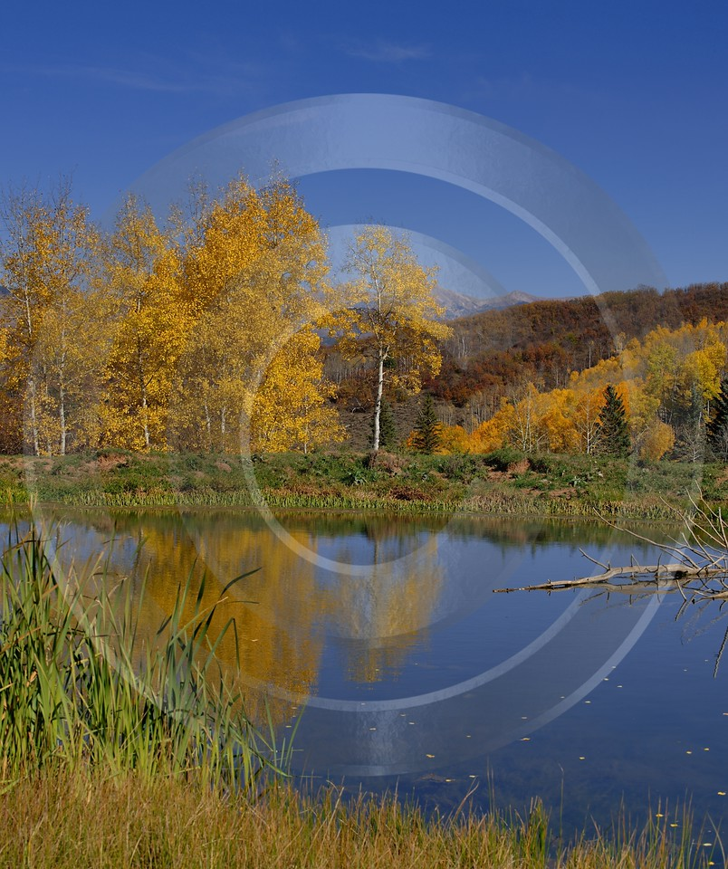 Paonia Country Road Landscape Photography Colorado Pond Landscape Autumn Creek Fine Art Print - 012235 - 07-10-2012 - 7078x8447 Pixel