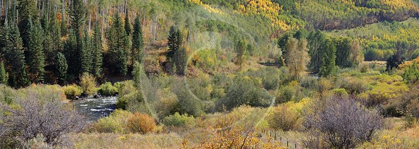 Meeker Ripple Creek Pass Country Road Prints For Sale Colorado Tree Flower Fine Art Landscapes - 008491 - 21-09-2010 - 11123x3975 Pixel