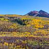 Mt. Sopris, McClure Pass