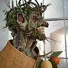 Winter (after Arcimboldo), National Gallery of Art, Washington, D.C.