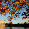 Jefferson Memorial, Tidal Basin, West Potomac Park, Washington, D.C.