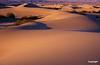 dunes10vrfin