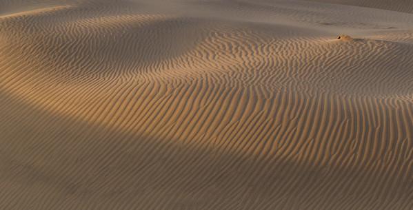 Mesquite Flat Dunes, #12