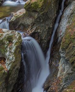Beaver Meadow Brook