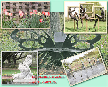 Brookgreen Gardens S.C.