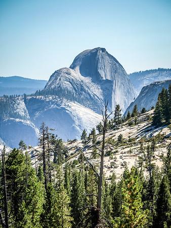 Yosemite - Half Dome in the backgound