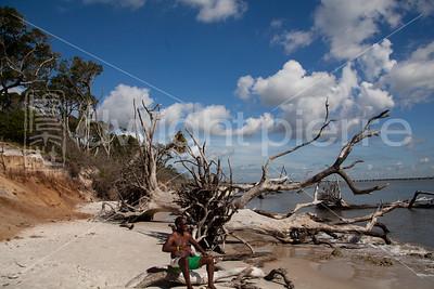dwight pierre Amelia & Talbot Island 2016 Florida IMG_2483