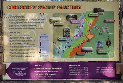 Corkscrew Swamp Sanctuary