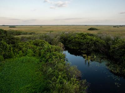 Everglades-Shark Valley