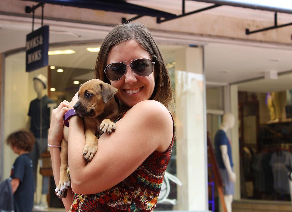 Dog adoption at Books and Books