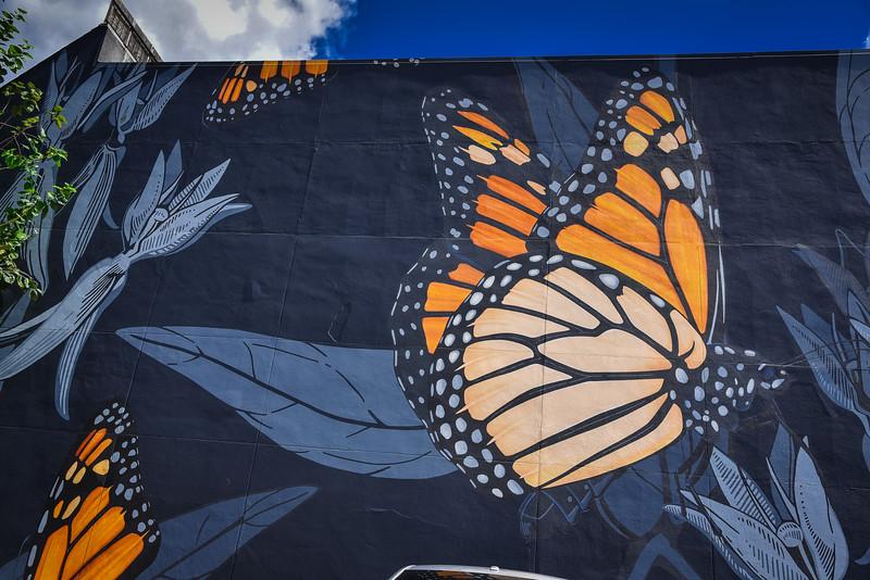 migrating mural orlando