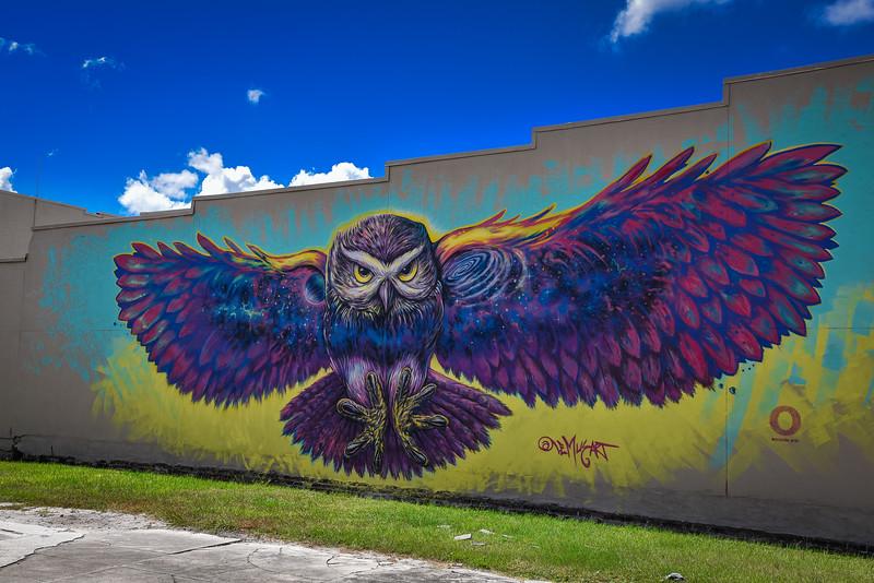 burrowing owl mural kissimmeee