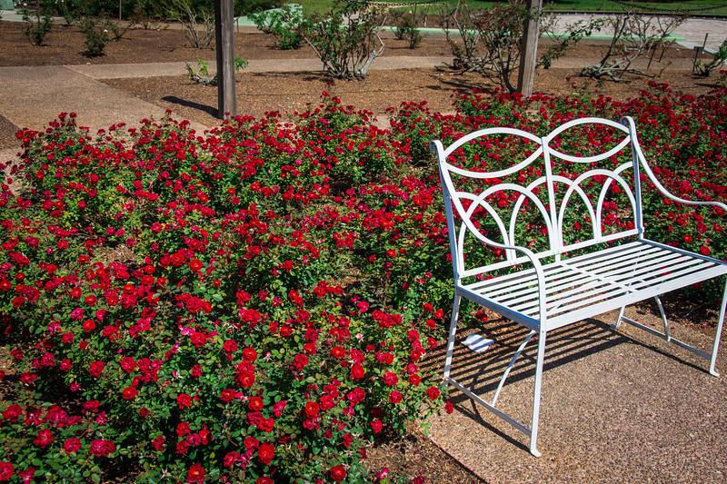 rose garden leu gardens