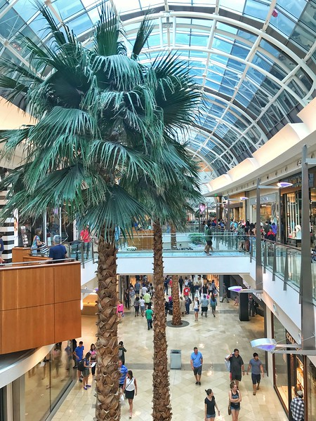 mall at millenia in orlando