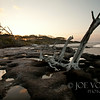 Dusk, Black Rocks Area, Big Talbot Island