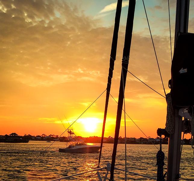 sail wild hearts sunset