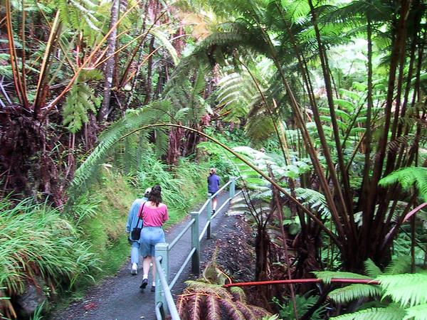path to the Thurston Lava Tube