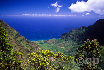 KAUAI ABOVE THE WORLD