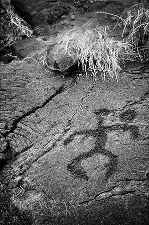 Petroglyphs, Hawaii Volcanoes National Park, Big Island, Hawaii