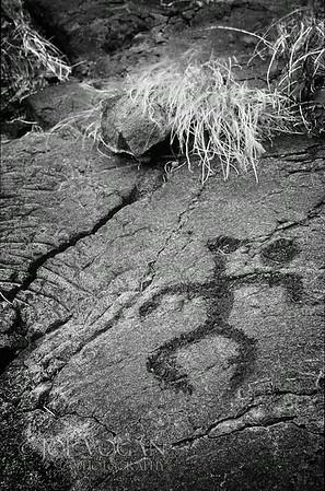 Petroglyphs, Hawaii Volcanoes National Park, Big Island, Hawaii